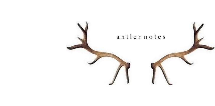 Antler notes