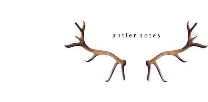 Antler notes