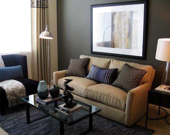 Contemporary small living room
