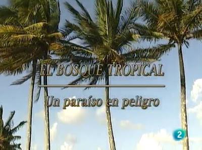 http://www.rtve.es/alacarta/videos/el-bosque-protector/bosque-protector-bosque-tropical-paraiso-peligro/1382484/