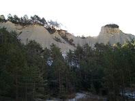 En aquest tram el bosc de pi rojalet està envoltat de turons de la formació margues de Vic