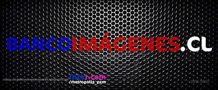 BANCOIMAGENES.CL | FLICKR.COM/METROPOLIS_PCM