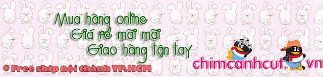 www.chimcanhcut.vn