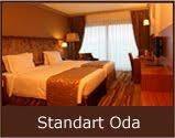 volley-otel-standart-oda-double
