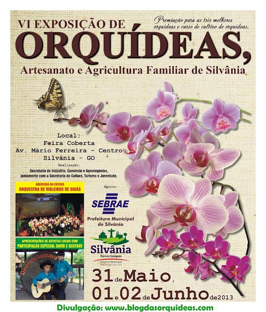 Exposição de Orquídeas de Silvânia - GO
