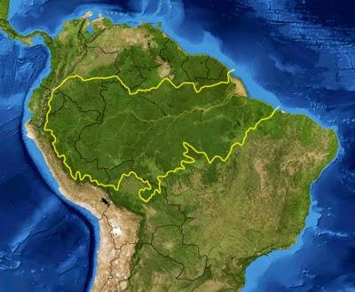 hutan amazon, tempat aneh dan nyata di dunia