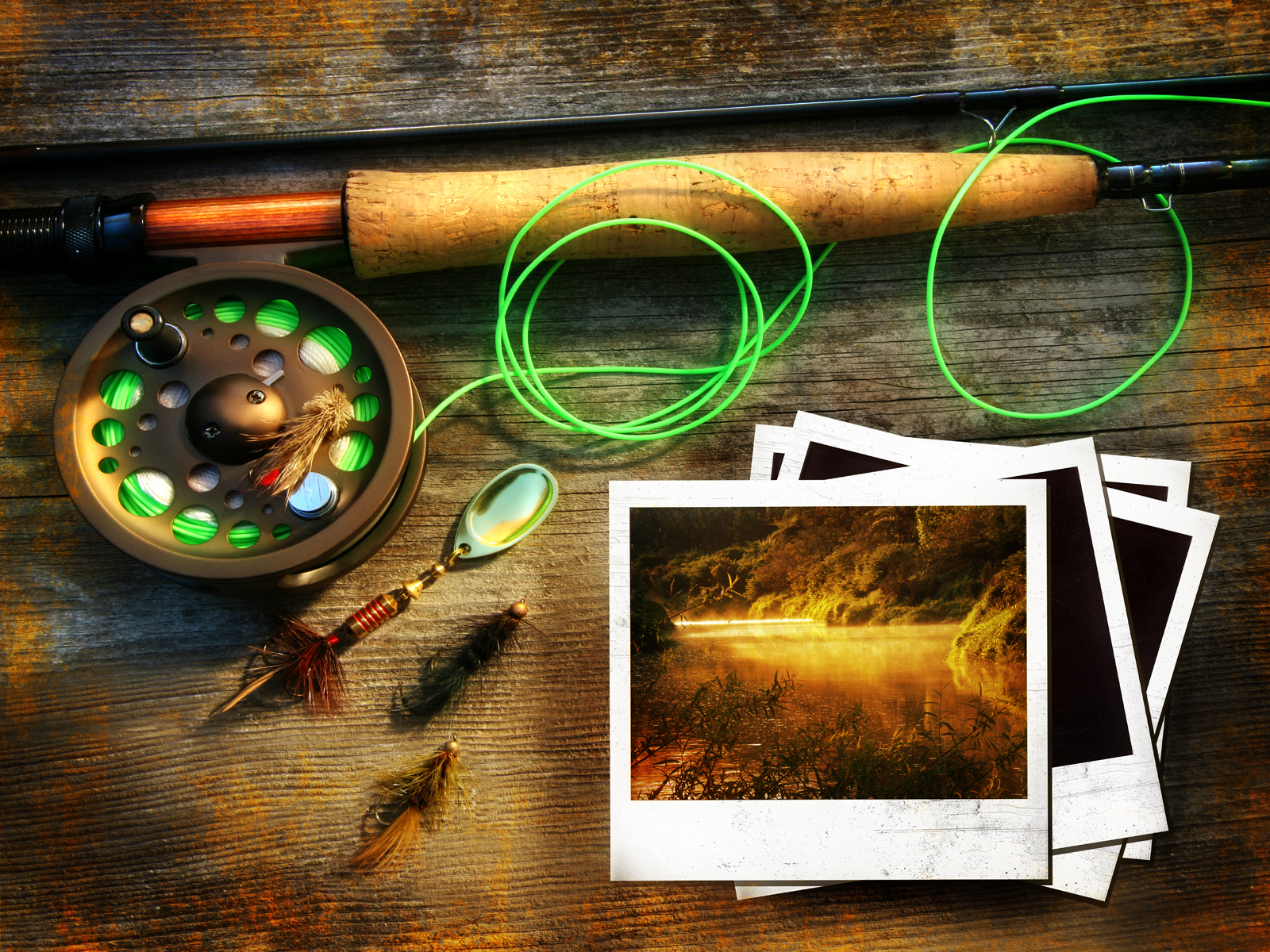 free wa11papers  Bowfishing Wallpaper