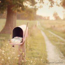 رسائل ربانية!!