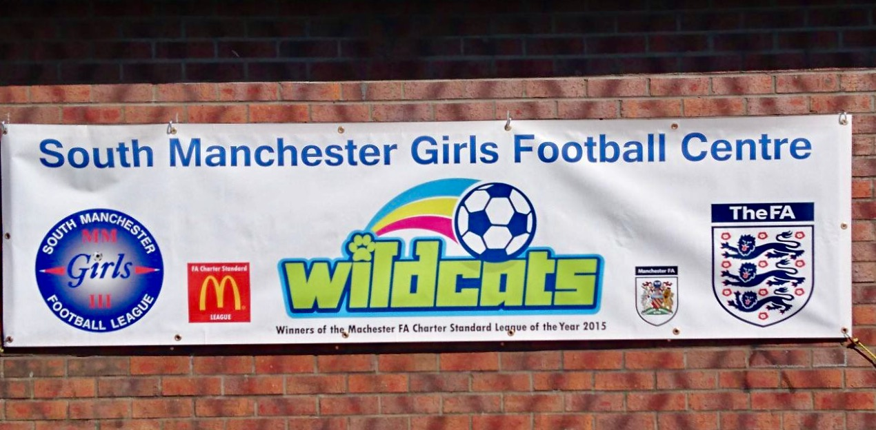 SMGFL Mini Centre Wildcats