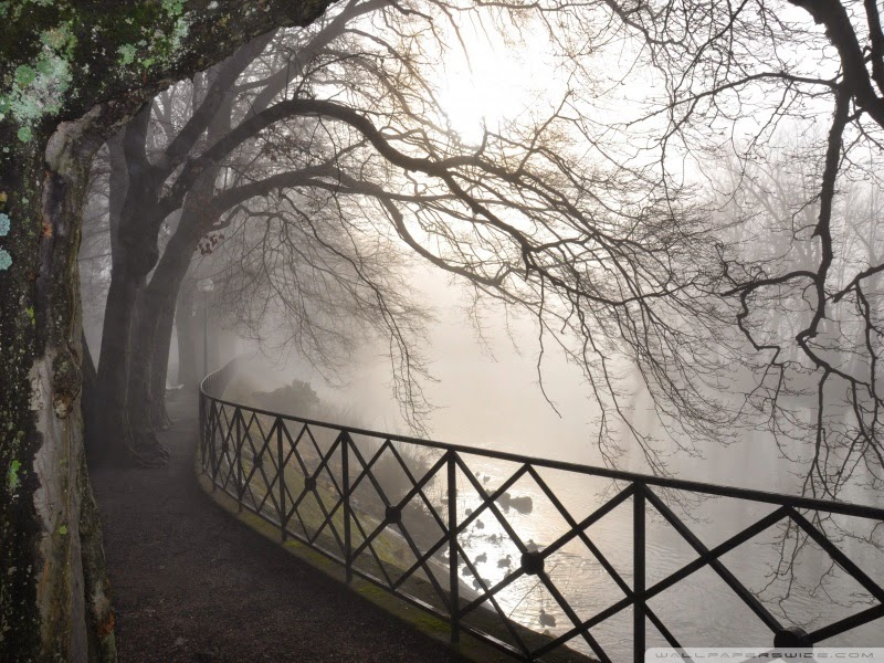 foggy river 25 Best Wallpapers For HTC Nexus 9