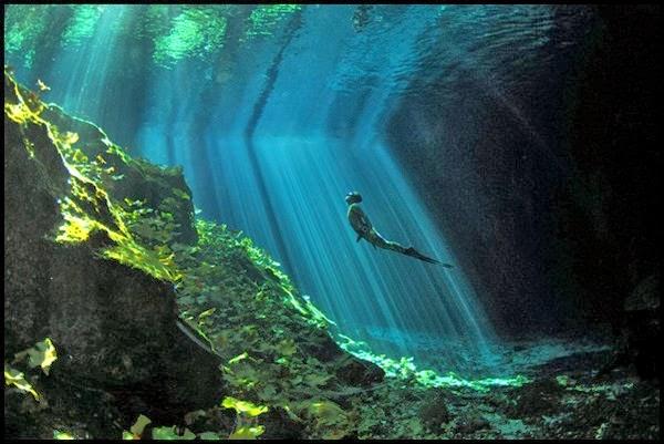 Concurso de Fotografias da National Geographic