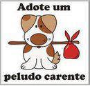 A D O T E  !!