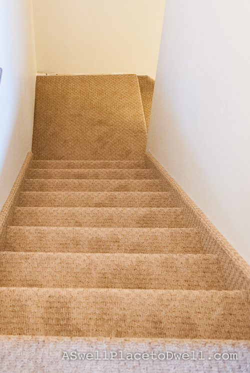 Carpet. Shaw Floors Take A Seat in Mineralite