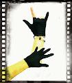 Glove Shop