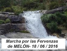 Melón_Imag