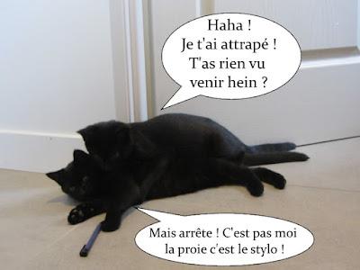 Deux chatons noirs à la chasse au stylo.