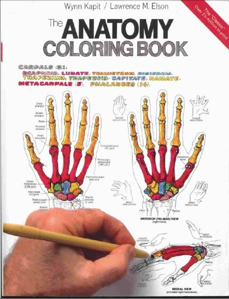 Anatomy Coloring Book 2nd Edition : For children ebook the anatomy coloring book