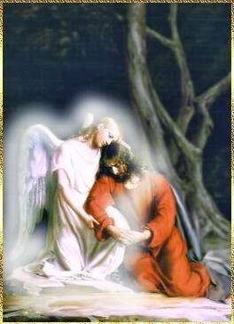 ღ 🌷 Gesù ☆ & ☆  Amore 🌷 ღ