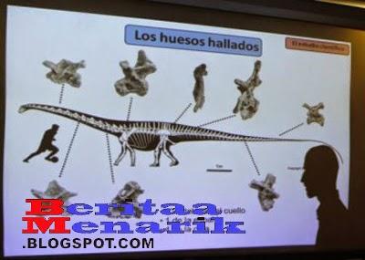 Penemuan fosil terbesar di dunia