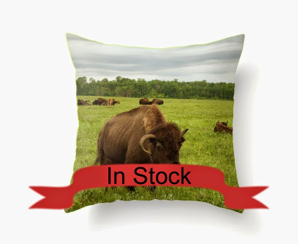 https://www.etsy.com/listing/174913923/bison-decorative-throw-pillow-cover