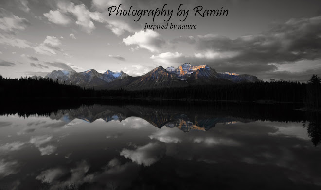 Photography by Ramin