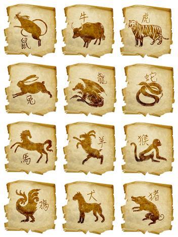 12  ANIMALES * 12 SIGNOS