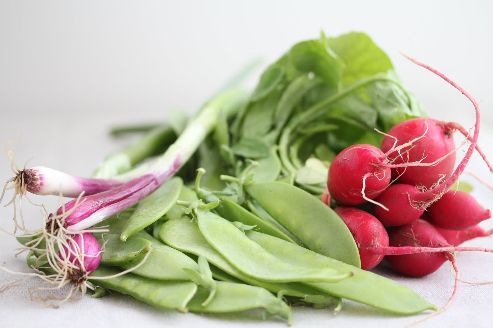 Radishes from my CSA Box, and Scallions and Snow Peas from the Farmer's Market