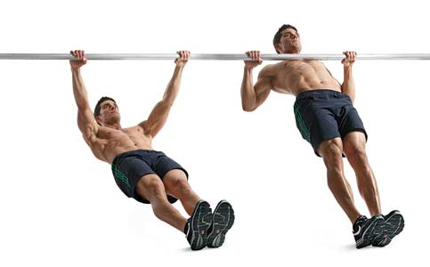 Daniel Guzman Strength... Inverted Rows Muscles Worked