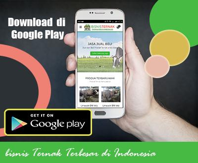 Bisni Ternak Terbesar Indonesia