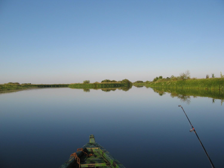 где сегодня клюет рыба карась рославльском районе