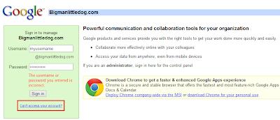 Google Apps Domain Registration - Reset Password