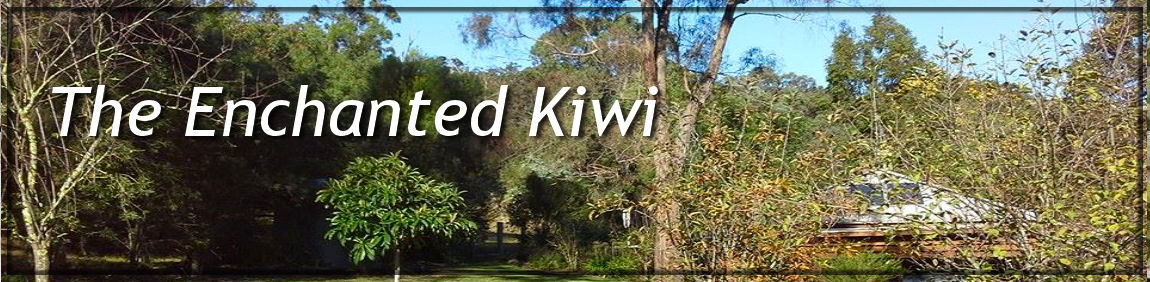 The Enchanted Kiwi