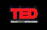 2013 TEDx Rosario