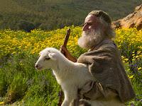 O Pastor Das Ovelhas