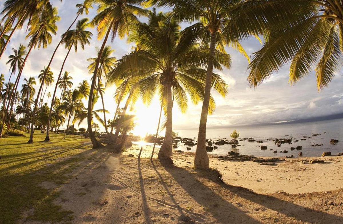 Рассказы про любовь на пляже 31 фотография