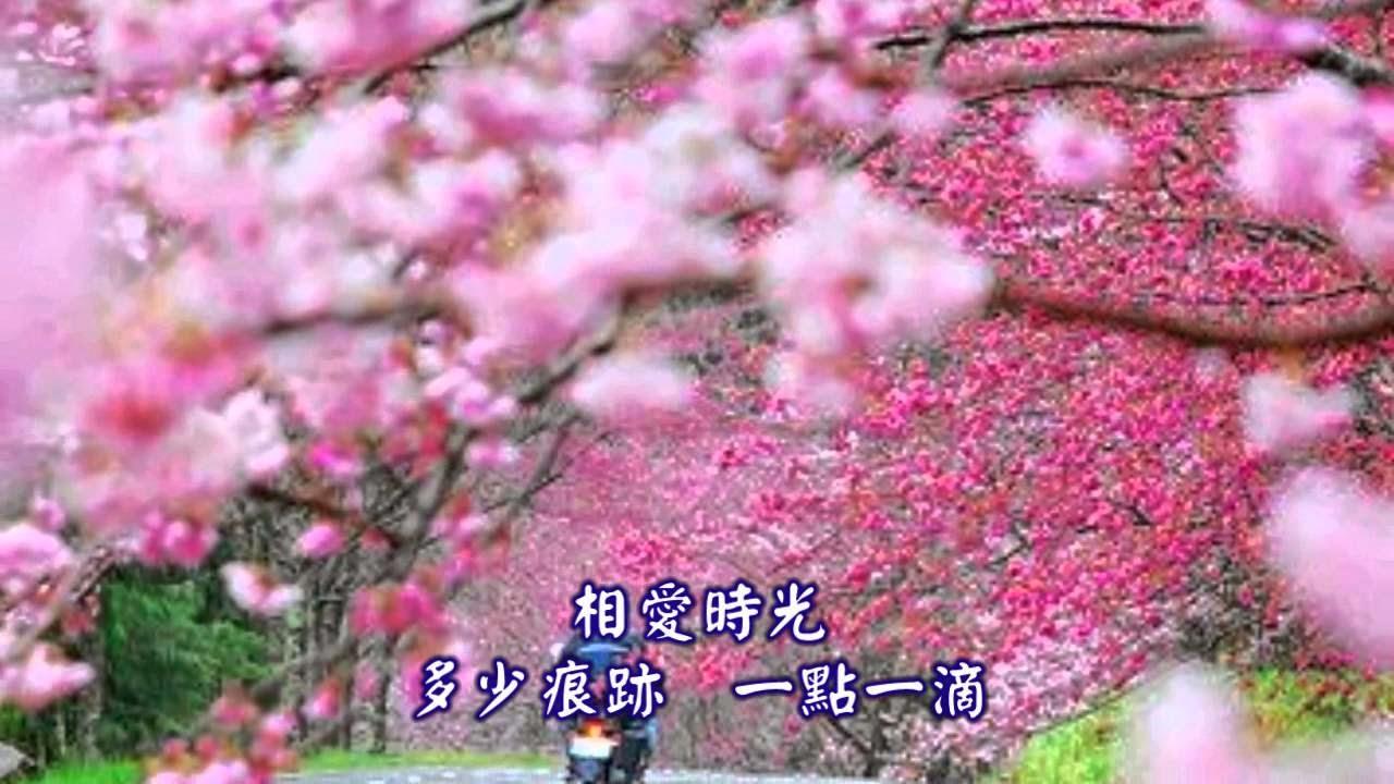 江音 (Jiāng yīn) - 難忘一段情 (Nán wàng yī duàn qíng) - Memorable love