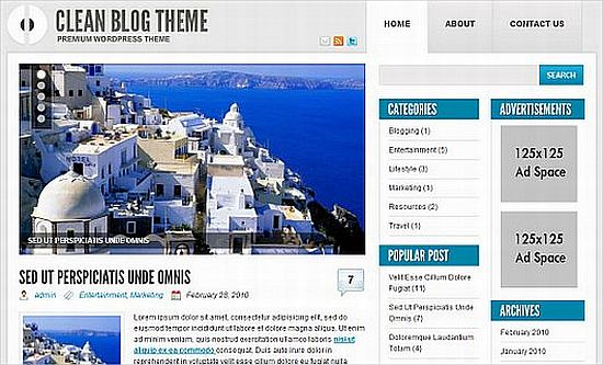 Download Ophion WordPress theme