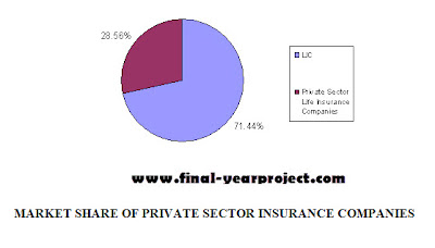 Market Share Insurance Company