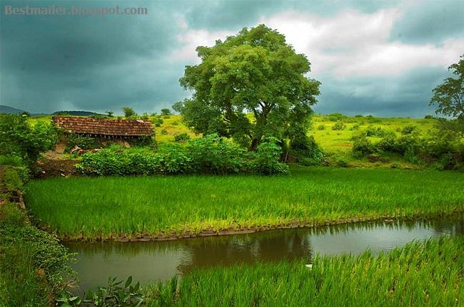 Konkan photos.14