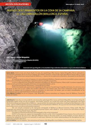 Publicación: descripción y ficha técnica