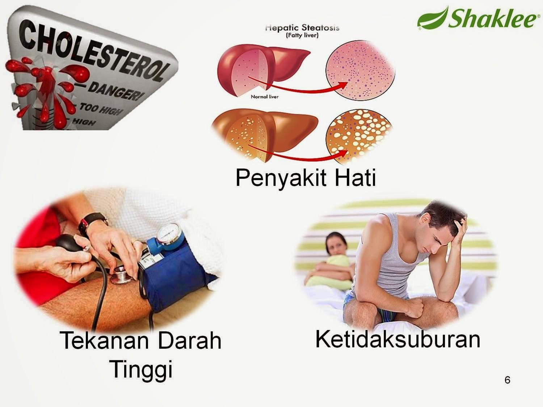 Kesan kolestrol tinggi