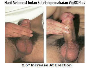 alat pembesar pria, vigrx, vigrx plus, hasil obat vigrx