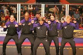 dodgeball united states