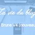 La P'tite Brune V4