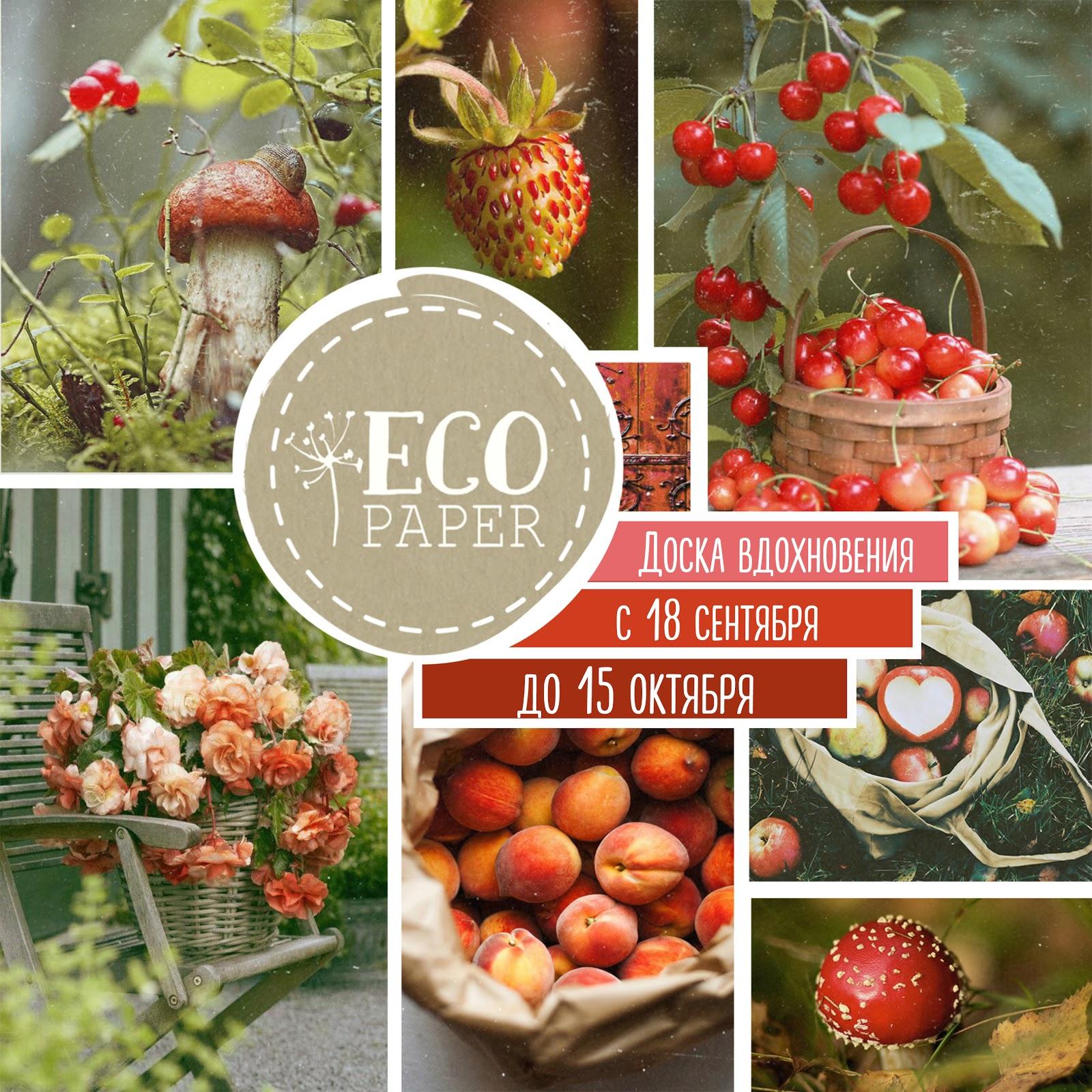 ДОСКА ВДОХНОВЕНИЯ от Eco Paper до 15 октября