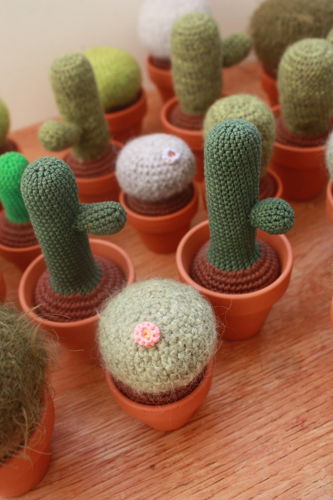 Amigurumi Crochet Flowers : Happyamigurumi: Cacti, crochet ones :)