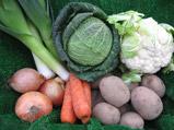 Bellfield Organics