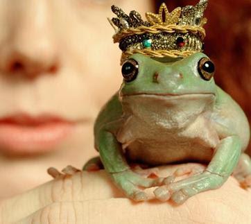 Cansada de besar ranas y ninguna