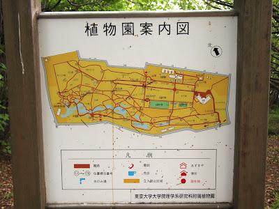 小石川植物園案内図
