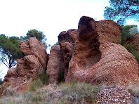 Exemple de conglomerats i gresos vermells del Buntsandstein, a sota de la Torre del Clos